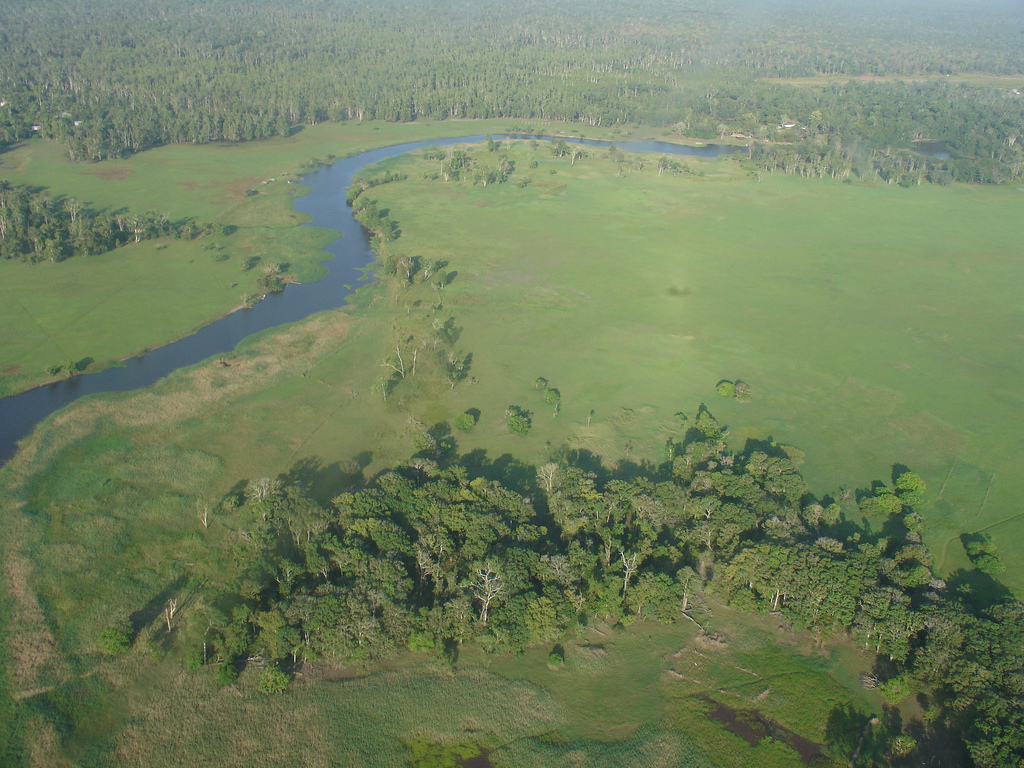 Tonda Wildlife Management Area (Papua New Guinea)