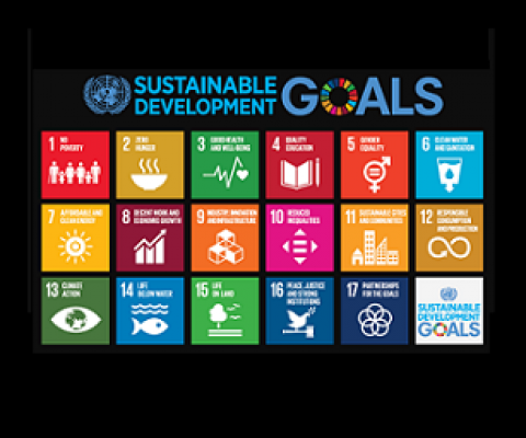 sustainable development goals. credit - www.un.org