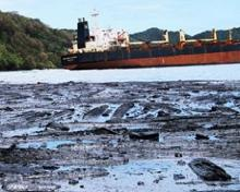 More than 300 tonnes of heavy fuel oil leaked into the waters of Kangava Bay in February last year.(Solomon Star: Carlos Aruafu)