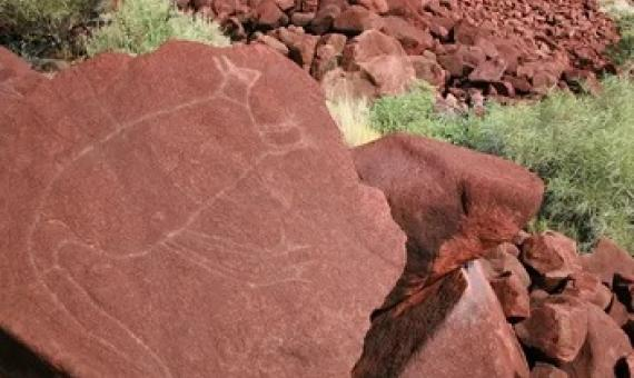 Rock engravings at Burrup Peninsula in Western Australia part part of the Murujuga cultural landscape and the country's largest collection of rock art. Photograph: Ken Mulvaney