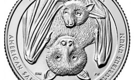 The Samoan fruit bat is being featured as part of the America the Beautiful Quarters program. Source - www.cnn.com
